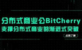 分布式商业公链BitCherry:支撑分布式商业的渐进式突破